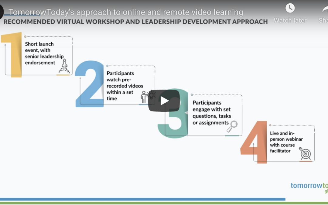 TomorrowToday's approach to online and remote video learning